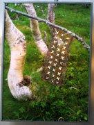 Laponský kobreček 2010 -3 016