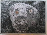 Seity (posvátná místa Laponců ), Divý muž severu, 2006 - 2007