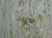 Lesík se třemi záhadami